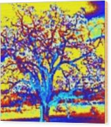 Oak Tree Wood Print