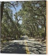 Oak Trees Along Live Oak Canyon Road Wood Print