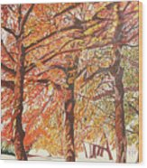 Oak Trees In The Park Wood Print