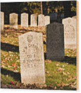 Oakland Cemetery Atlanta Wood Print