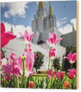 Oakland Pink Tulips Wood Print