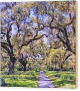 Oaks And Spanish Moss Wood Print
