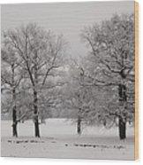 Oaks In Winter Wood Print by Gabriela Insuratelu