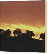 Oaks On Hill At Sunset Wood Print