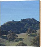 Oakscape Wood Print