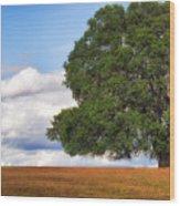 Oaktree Wood Print