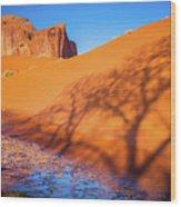 Oasis Tree Shadow Wood Print
