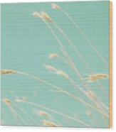 Oats On Aqua Background Wood Print