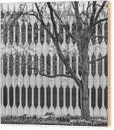Oberlin College Bibbins Hall Wood Print