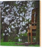 Observation Chair Wood Print