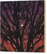 Ocala Moonrise Wood Print