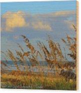 ocean/ Beach Wood Print