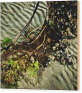 Ocean Bouquet Wood Print
