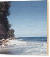 Ocean Cliffside Wood Print
