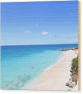 Ocean Club St Maarten Wood Print