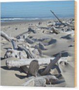 Ocean Coastal Art Prints Driftwood Beach Wood Print by Baslee Troutman