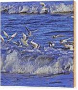 Ocean Delight 2 Wood Print