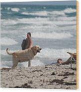 Ocean Dog Wood Print