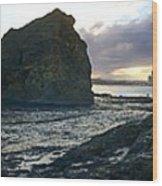 Ocean Headland Panorama Wood Print