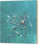 Ocean Marine Wood Print