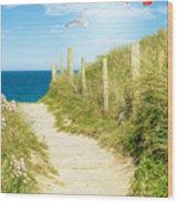 Ocean Path In Cornwall Wood Print