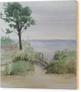 Ocean Scene Wood Print