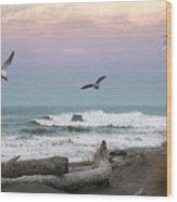 Ocean Shores O1074 Wood Print