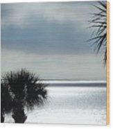 Ocean Spectacular Wood Print