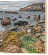 Ocean Stones Wood Print