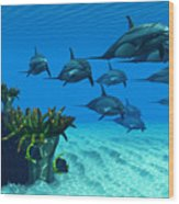 Ocean Striped Dolphins Wood Print
