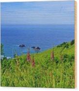 Ocean Views Wood Print