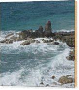 Oceanic Beauty Wood Print