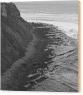 Oceans Edge Wood Print