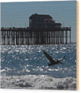 Oceanside Resident Photograph Wood Print