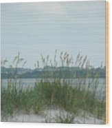 Oceanview Through Seaoats Wood Print
