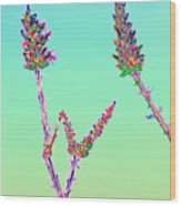 Ocotillo Blossums After Too Much Tequila Wood Print