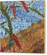 Ocotillo In Bloom Wood Print