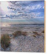 Ocracoke Winter Dunes II Wood Print by Dan Carmichael