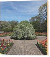 Octagon Garden At Cantigny Park Wood Print