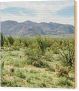 Octillo Field Wood Print