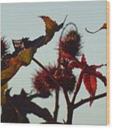 October Light Wood Print