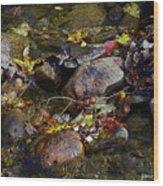 October Puddles Wood Print