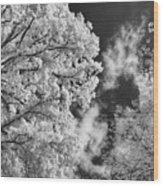 October Sky Ir Wood Print