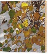 October Snow Wood Print