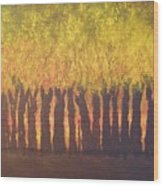October Trees At Sunset Wood Print
