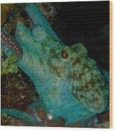 Octopus Yoga Wood Print