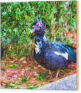Odd Looking Duck In Swansboro Nc 2 Wood Print
