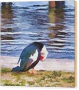 Odd Looking Duck In Swansboro Nc Wood Print