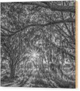 Odessa Sunrise -black And White Wood Print