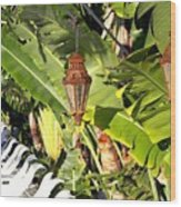Of Lanterns And Lawn Chairs Wood Print